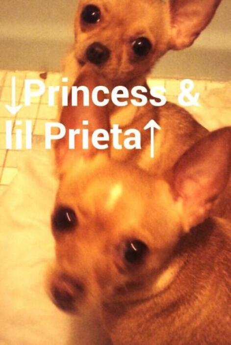 Princess y Lil Prieta