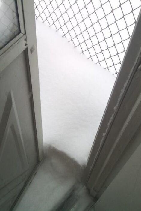 Rafa Pérez Paterson nos muestra cómo invadió la nieve parte de su casa.