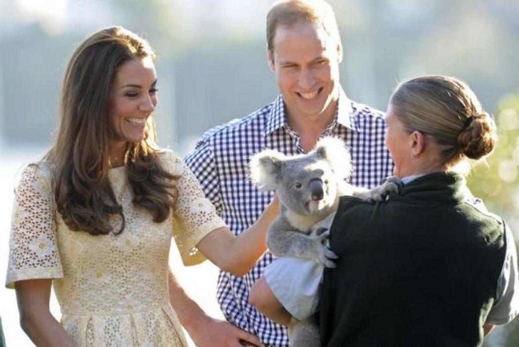 Un koala fue el causante de muchas sonrisas esbozadas por los duques.