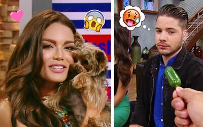 #DAEnUnMinuto: Tobi asustó a Zuleyka Rivera y William no se arriesgó a c...