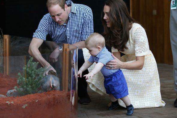 Se sorprendían y emocionaban igual que el bebé, quien apen...