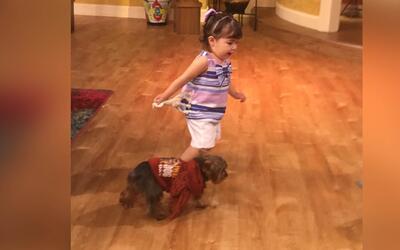 Baby Giulietta conoció a Tobi y se hicieron grandes amigos