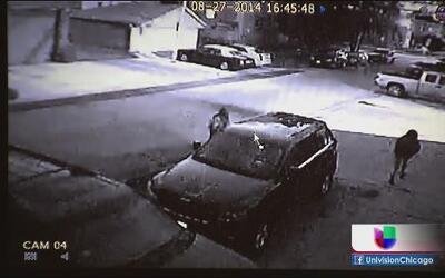 Captan banda de niños roba autos en Gage Park