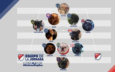 Once Ideal de Perros de la MLS