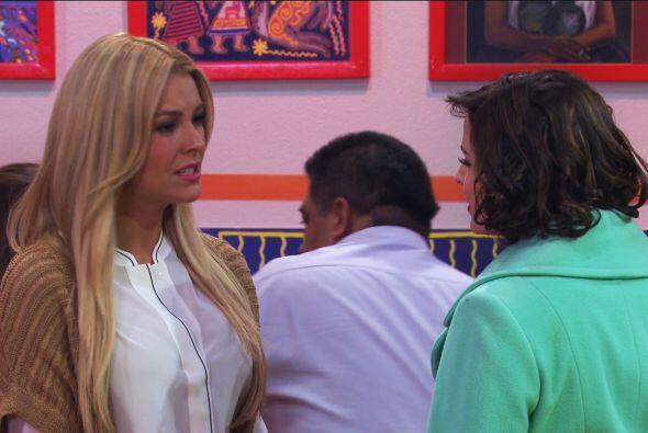 Sofía es la que tiene el amor de Salvador y ahora también las atenciones...
