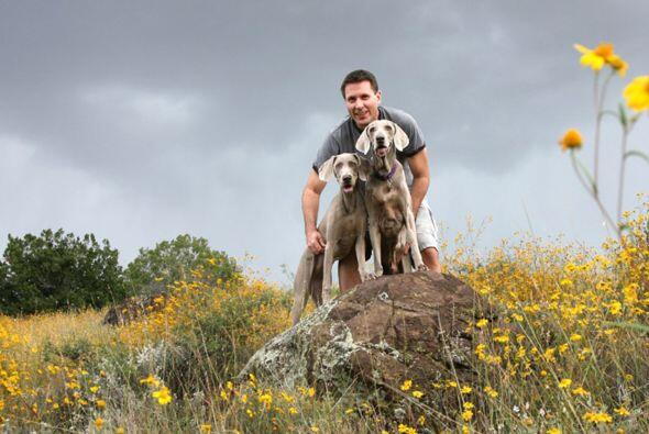 Gilbert es un perro muy afortunado, sobrevivió a la extirpación de un tu...