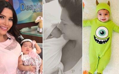 Bebés Univision