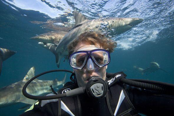 Aaron Gekoski se tomó varias selfies bajo el agua, rodeado de tib...