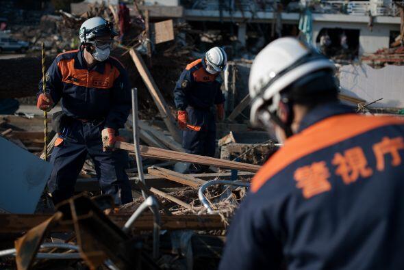 La lucha por rescatar vidas sigue aún en pie. Unos 90 mil trabajadores d...