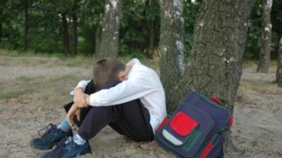 La transición a la escuela media suele ser un periodo difícil para los a...