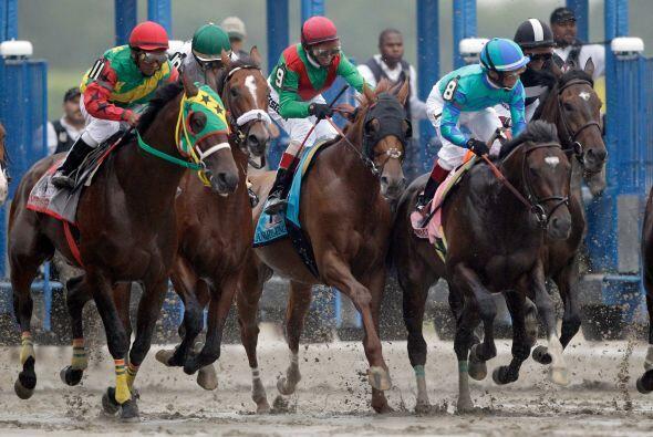 Cuando el grupo de 12 caballos se enfiló a la recta final en la c...