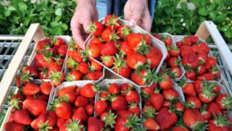 Los colores de las frutas y verduras hacen las veces de etiqueta nutrici...