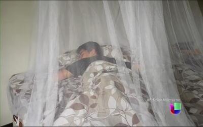 Alarmante incremento de malaria en Venezuela
