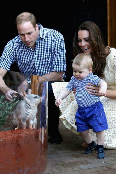 Los Duques de Cambridge visitaron el zoológico de Taronga en Sydn...