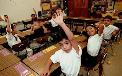 Clase bilingüe en una escuela elemental de Texas (archivo)