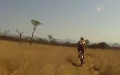 Un animal sorprendió a este ciclista y lo tiró