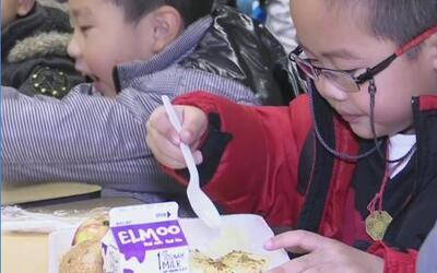 La alimentación, papel importante en el desarrollo infantil