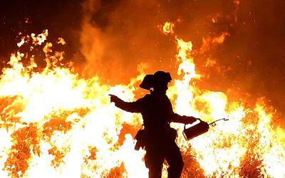Salve su vida y la de su familia en caso de incendio con estas recomenda...