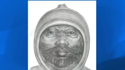 Boceto del sospechoso de la violación en Manhattan.