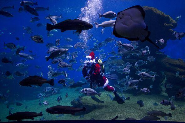 1 .- Bajaría hasta el fondo del mar, si allí estuviese tu juguete favori...