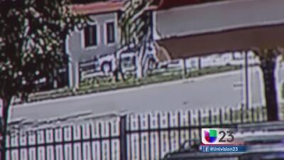 Captan en video ataque de perro a niño de ocho años