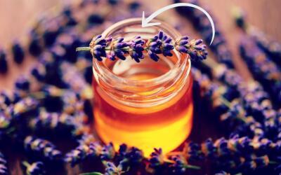 Miel de abeja con flores de lavanda.