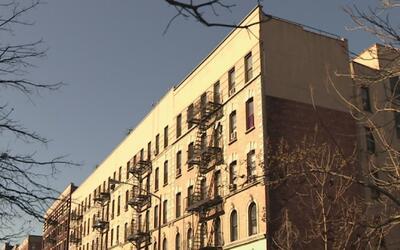 Anuncian nuevo programa de NYCHA para erradicar el moho en al menos 38 e...