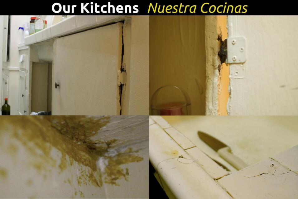 Mobiliario de la cocina en mal estado.