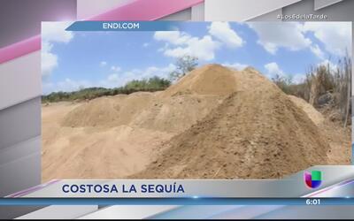 ¿Cuánto cuesta la sequía a Puerto Rico?
