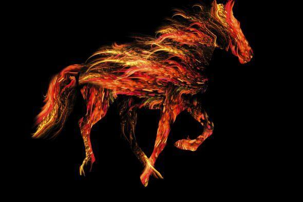 El Dragón en el Mes del Caballo (del 20/21 de mayo hasta el 20/21 de jun...