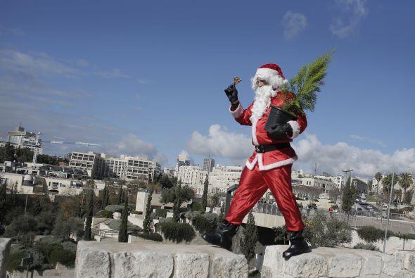En Jerusalén repartió árboles de navidad para que s...