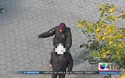 Buscan a sospechoso que agredió a un anciano en un parque de Manhattan