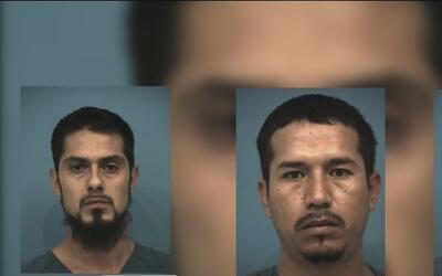 Acusan a tres personas por presuntamente participar en peleas de gallos...