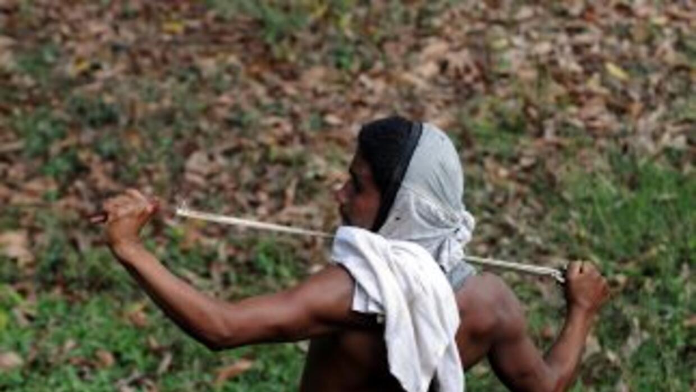 Las FARC anunciaron que sólo saldrán del convulso departamento del Cauca...