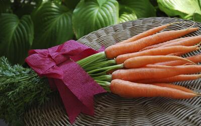 Vida Sana con Cecilia: Alimentos orgánicos vs convencionales