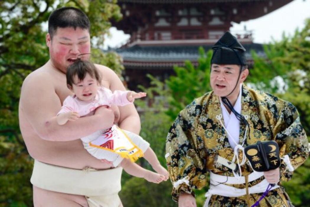 El Gyoji sostiene un abanico de madera para indicar cuándo inicia el com...