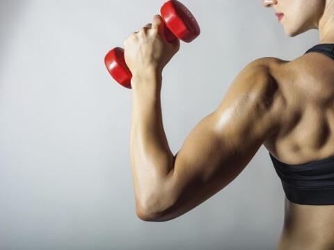 ¿Escuchaste que levantar pesas era una gran forma de moldear tu c...