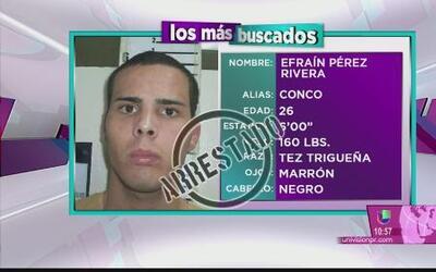 Agentes de Extradiciones arrestan a algunos de los más buscados en Puert...