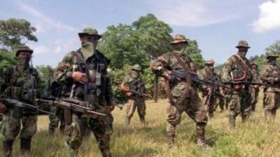El cese de hostilidades declarado por las FARC entró en vigor este 20 de...