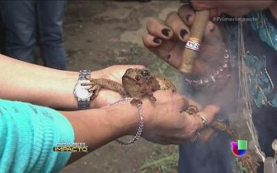 """En México realizaron una """"limpia"""" colectiva en el mayor mercado esotérico"""