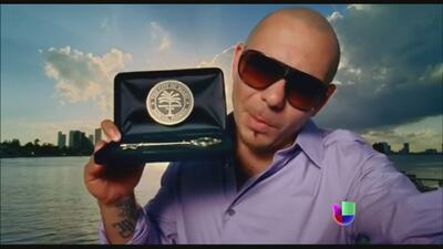 Conozca la diferencia entre Pitbull, el artista y Armando, el hombre