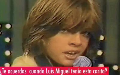 La vida de Luis Miguel será una serie de televisión