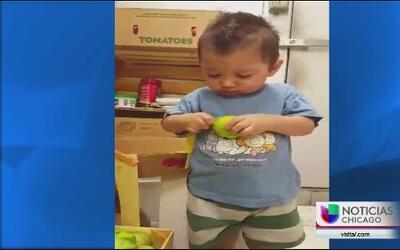 Niño muere arrollado en el barrio de las empacadoras