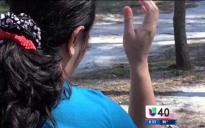 Una madre en Shannon exige justicia para su hijo, quien fue víctima de a...
