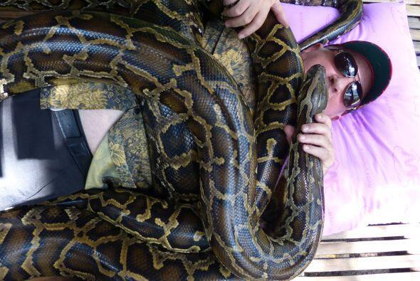 El zoológico de la ciudad de Cebú, en filipinas, ofrece este servicio co...