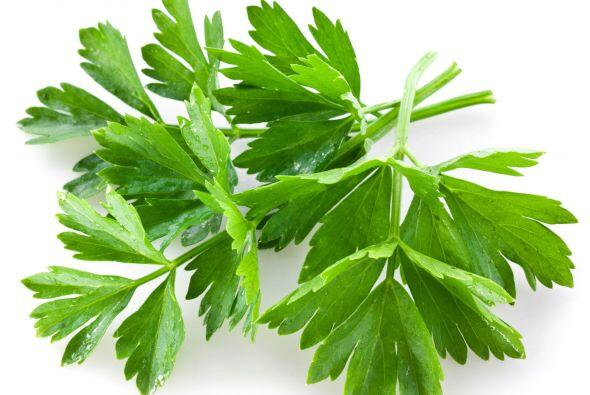 Cilantro: Su tallo, semillas, sus frutos y las hojas, todo se puede util...