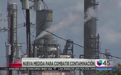 Propuesta natural para combatir la contaminación