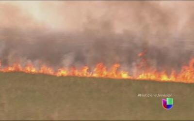 Una densa capa de humo cubrió gran parte del sur de la Florida