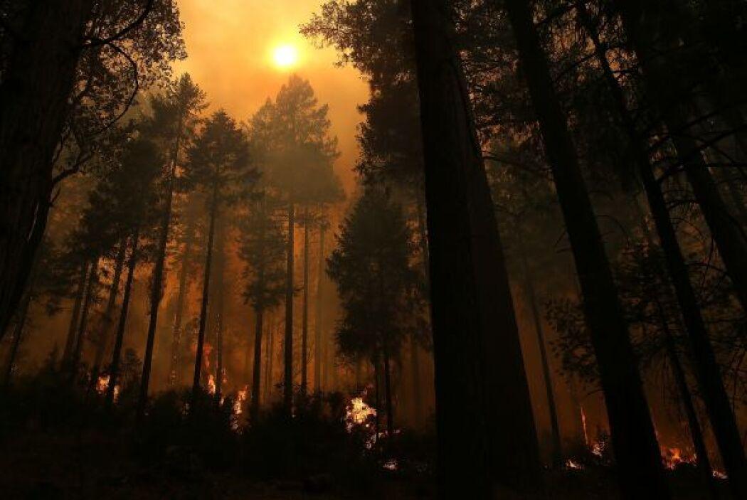 El centro mencionó tres incendios en Montana como la principal prioridad...