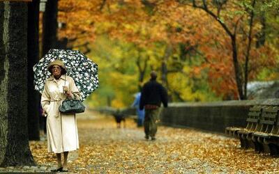 Aprovecha esta hermosa época para pasear por la ciudad y las afueras de...